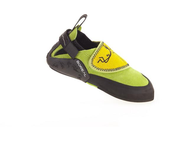 Boreal Ninja Pies de Gato Jóvenes, green